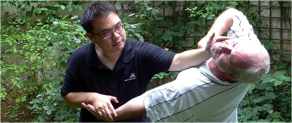 Master Alan Ding Tai Chi